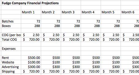 Start a Business Sample Financials