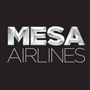 新梅萨航空公司标志设计